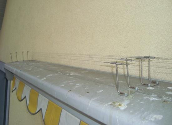 vogelschutz schutz von dach und fassade vor tauben co. Black Bedroom Furniture Sets. Home Design Ideas